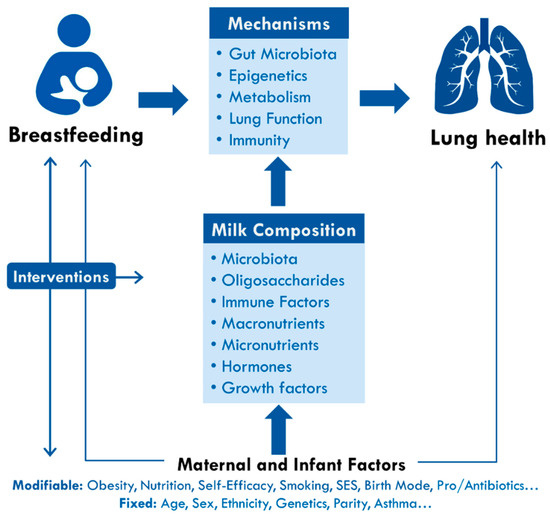 Breastfeeding can reduce the risk of disease