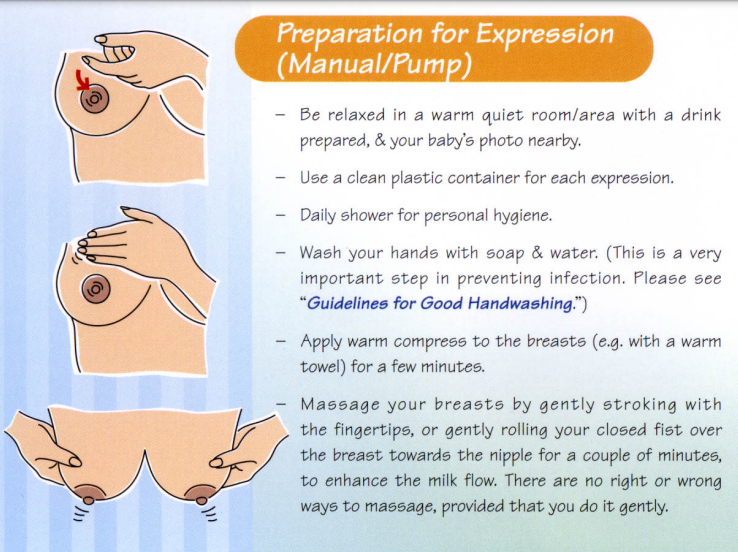 Hand expression is easy to understand and easier to perform. Take the following steps: